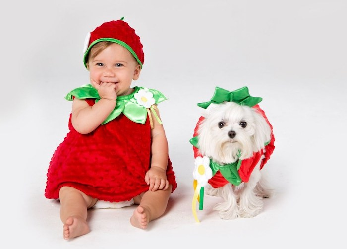 Adorable bébé fille en costume de fraise et son chien déguisé comme fraise, deguisement halloween fille, deguisement enfant original