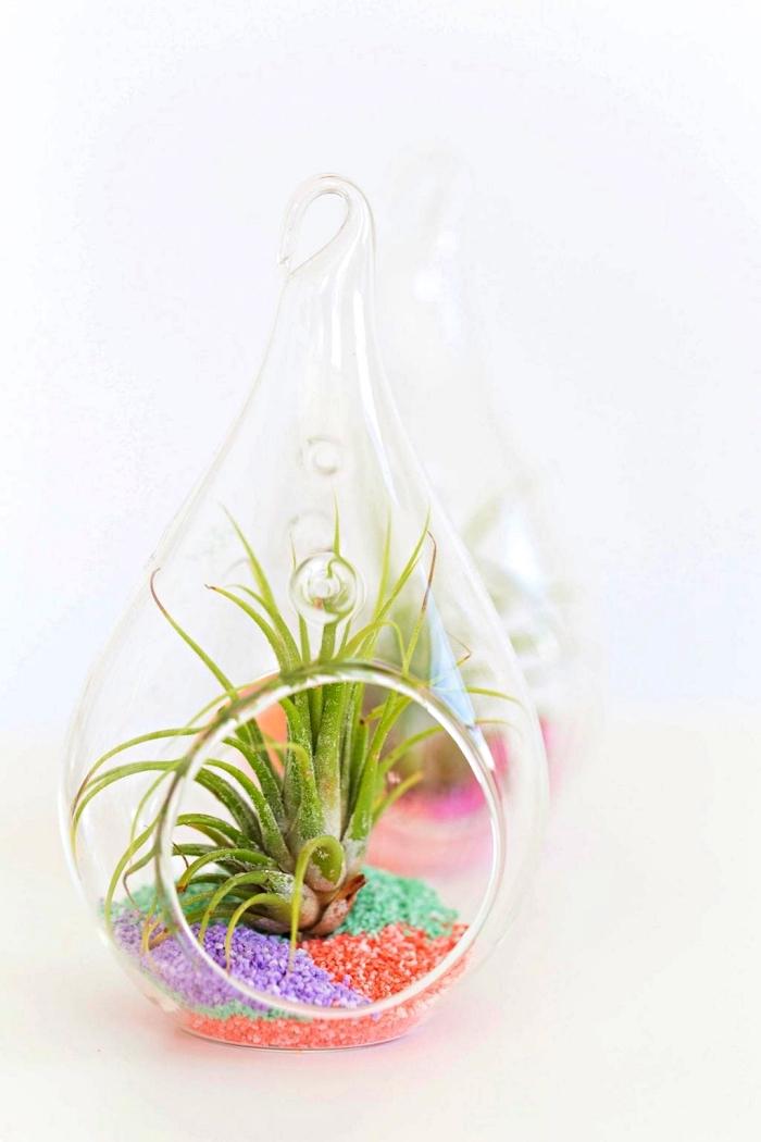 terrarium goutte pour succulentes décoré de sable vert, orange et violet, comment colorer du sable avec des craies