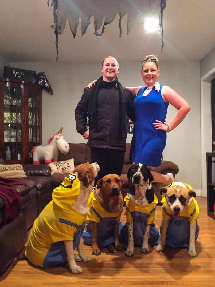 Chies déguisés comme les Minions, Détestable moi déguisement drôle, déguisement halloween fait maison couple et ses chiens
