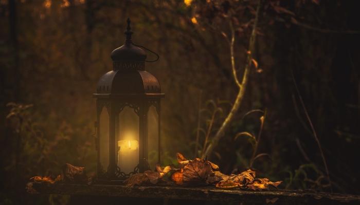 fond d écran horreur, paysage nocturne dans une forêt hantée aux arbres séchées avec lumière de lanterne allumée