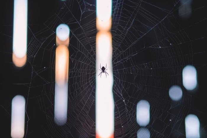 idée fond d écran noir pour ordinateur, photo de toile d'araignée et lumières, wallpaper ordinateur pour halloween