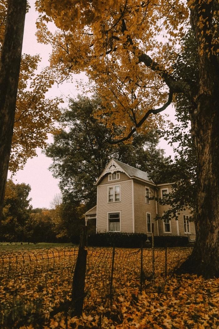 fond d écran automne pour verrouillage écran Iphone, photo de maison hantée dans une forêt aux arbres séchées
