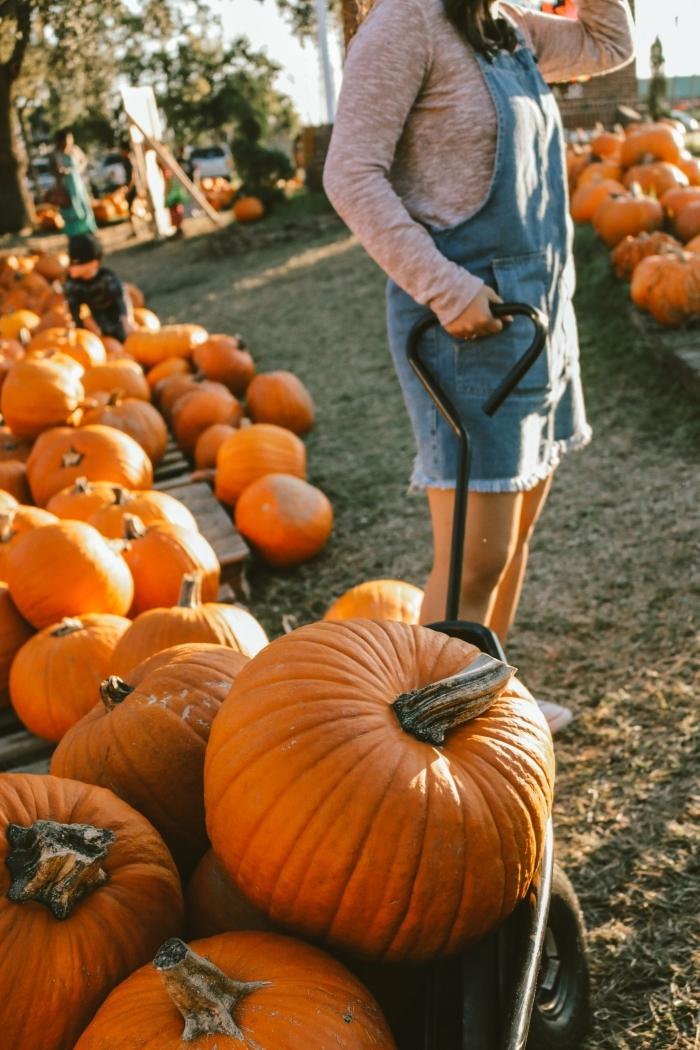 idée fond d'écran portable automne, wallpaper iphone avec fille et citrouilles, idée paysage d automne pour wallpaper