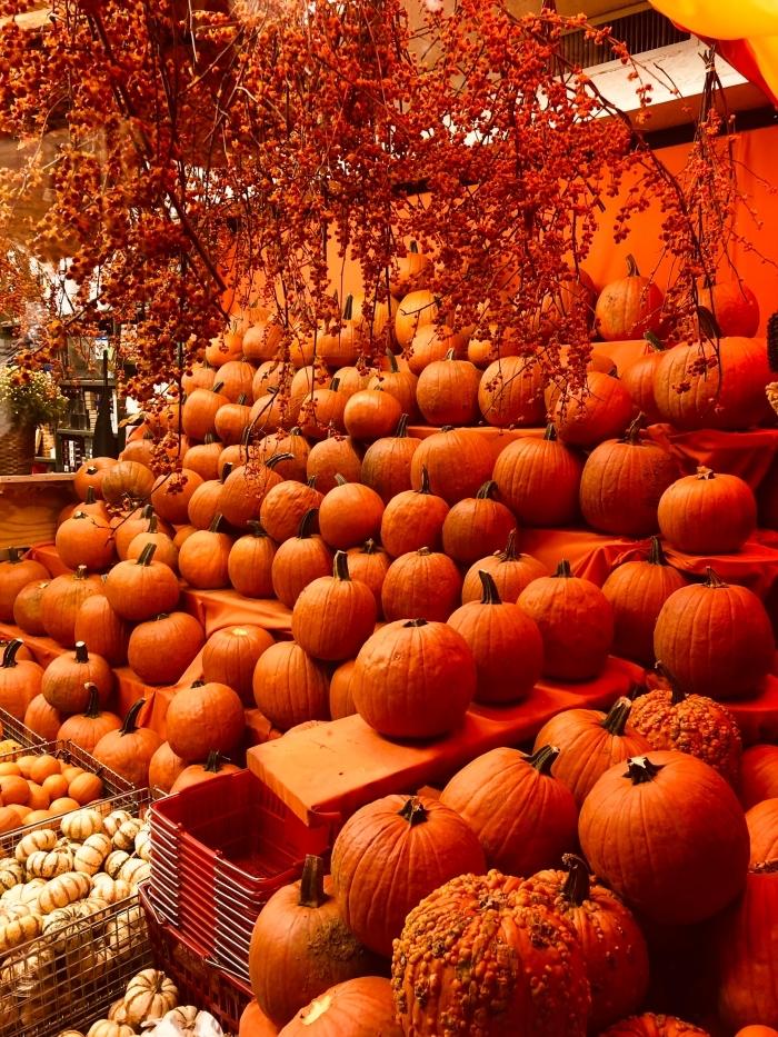idée fond d écran automne pour iphone, activité manuelle pour halloween avec citrouilles, wallpaper avec citrouilles