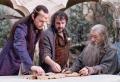 La Nouvelle-Zélande accueillera le tournage de la série «Le Seigneur des Anneaux»