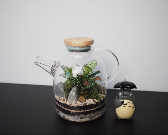 bricolage plante sous verre, quelles plantes pour un terrarium avec couvercle, couches de remplissage terrarium bocal