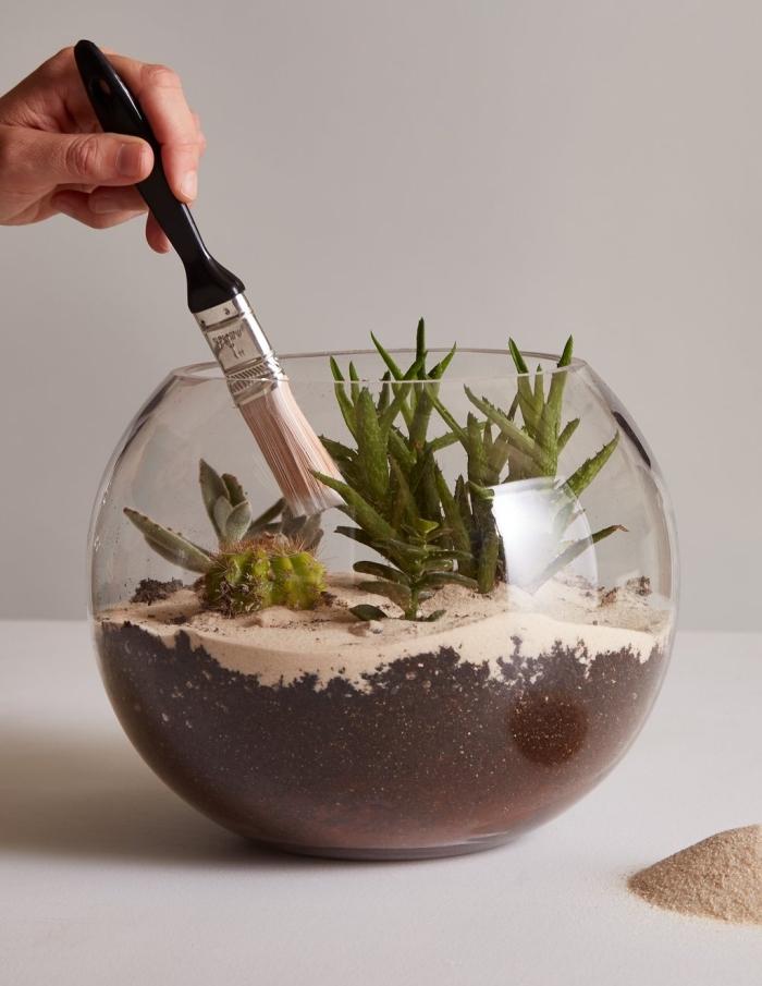 modèle de terrarium verre dans un aquarium rempli de sable et terreau, idée quelles plantes pour un terrarium ouvert