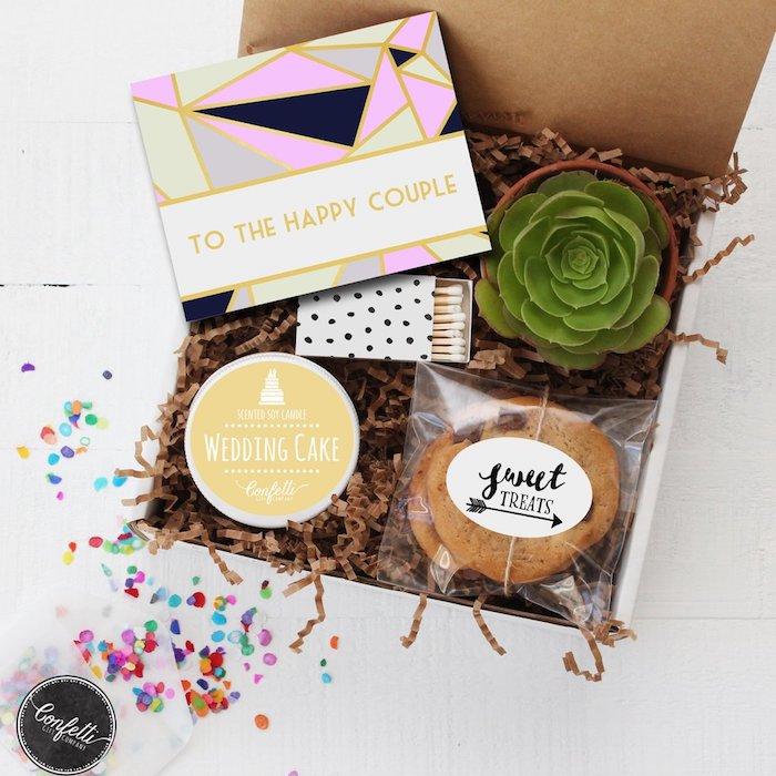 Plante verte dans un coffret couple joyeux, idée cadeau parents, cadeau à offrir à un couple, biscuit au chocolat