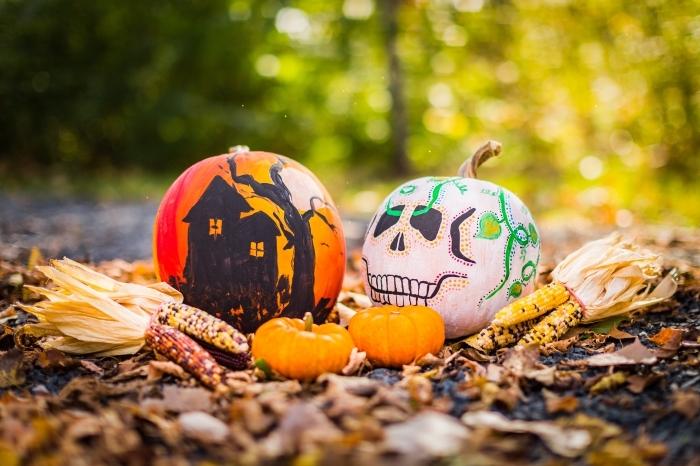 diy décoration de citrouille pour halloween, activité manuelle facile halloween, citrouille décorée halloween avec dessins horreur