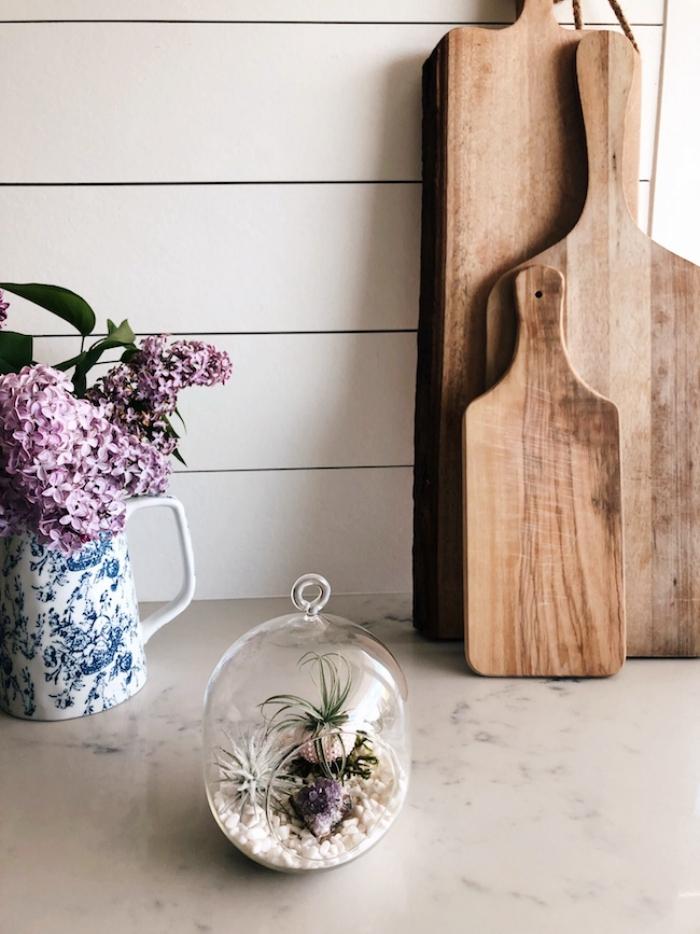 modèle de terrarium plante dans un récipient ouvert rempli de galets blancs et plantes aériennes, objet décoratif à réaliser soi-même
