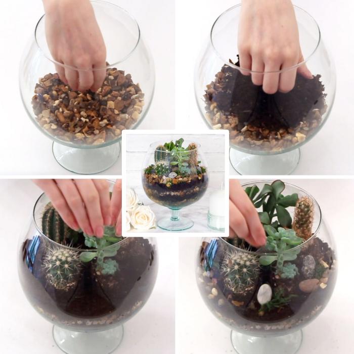 comment réaliser un terrarium cactus, activité manuelle facile avec plantes, idée terrarium cactus dans un contenant verre