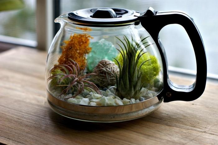 loisir créatif facile, faire un mini jardin dans verseuse, idée quelles plantes pour un terrarium en verre fermé