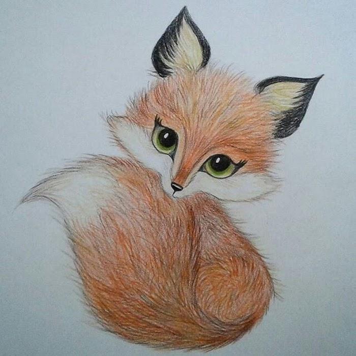 Dessin de renard adorable, idée animaux dessin automne crayons colorés, yeux verts comme d'une femme