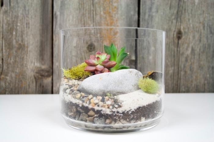 réaliser un terrarium plante bocal facile, activité manuelle facile et rapide, modèle terrarium avec plantes artificielles