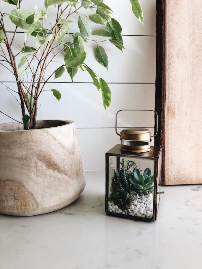 objets de décoration à faire soi-même, diy plante en bocal fermé en forme de lanterne, modèle mini jardin avec galets