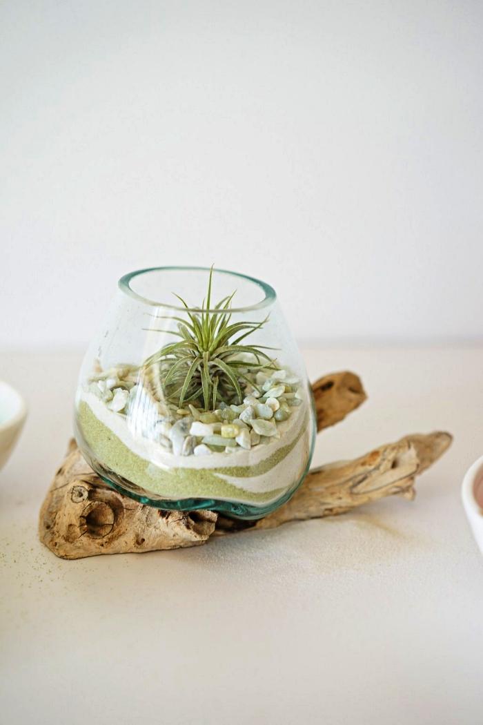 exemple comment réaliser un terrarium soi même avec du sable vert, du sable naturel et du galet décoratif