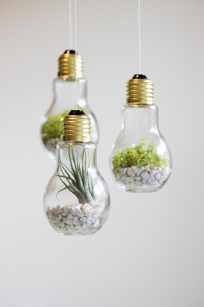 que faire avec des ampoules électriques, modèle de terrarium plante dans ampoule, remplissage ampoule cailloux et plantes