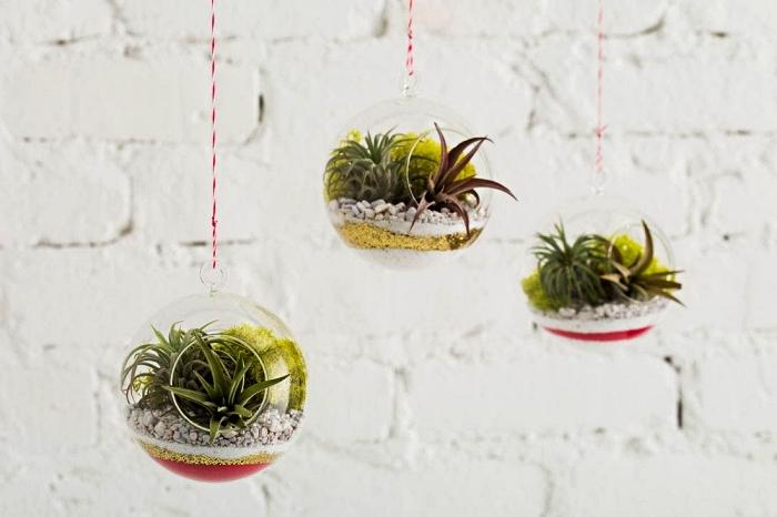 terrarium suspendu pour plantes grasses rempli de couches de sables colorés et de gravier, activité manuelle facile et rapide pour réaliser une déco naturelle originale