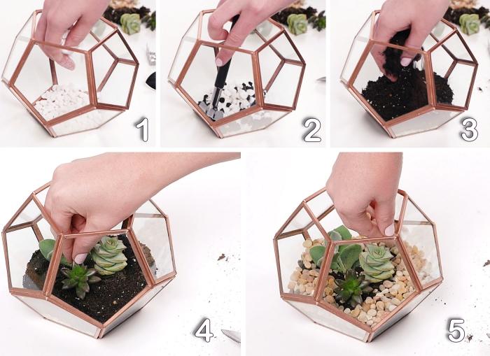 étapes à suivre pour faire un mini jardin dans contenant en verre, exemple comment fabriquer un terrarium succulentes
