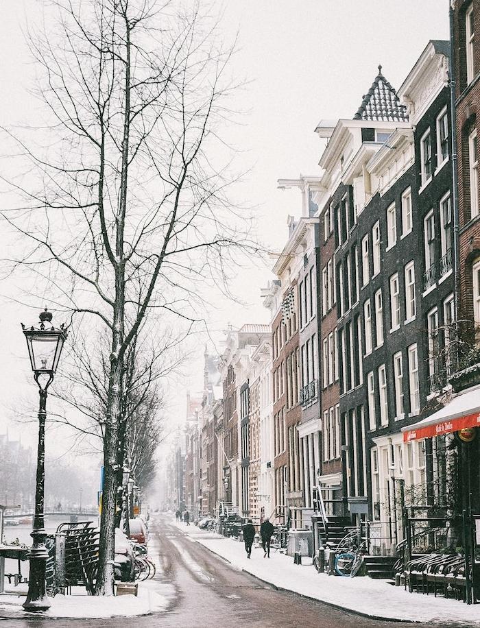foto de ▷ 1001 + images pour choisir le plus joli fond d'écran hiver