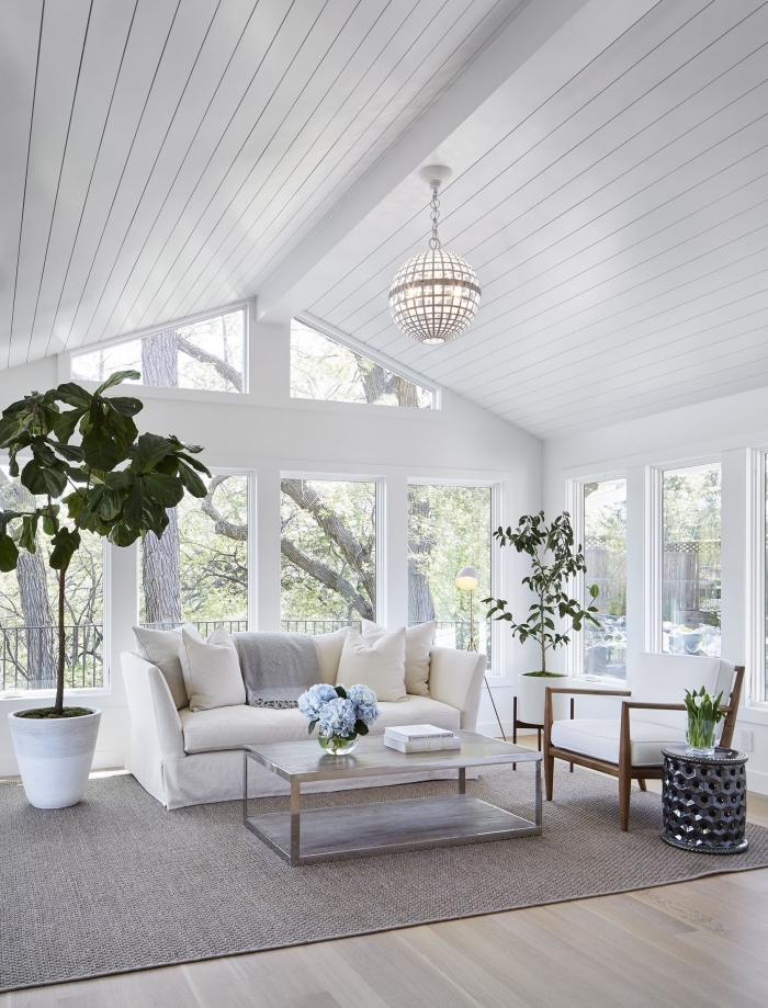 idée de deco salon cosy dans une pièce blanche avec plancher bois clair et accents gris clair, modèle de plafond à deux pentes