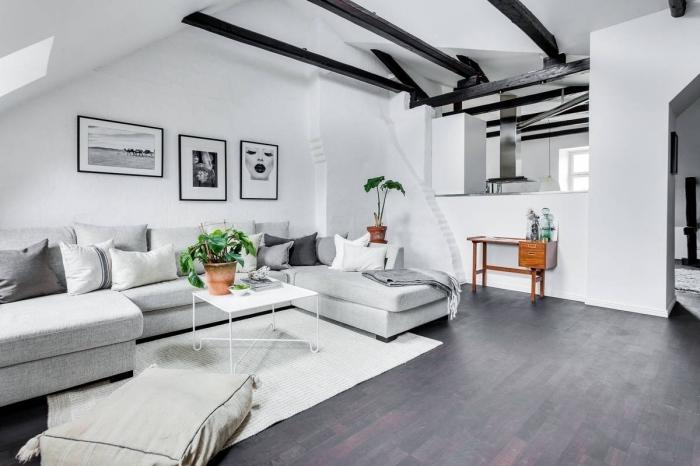 design intérieur style contemporain, idée de plafond cathédrale à une pente avec poutres bois peintes en noir