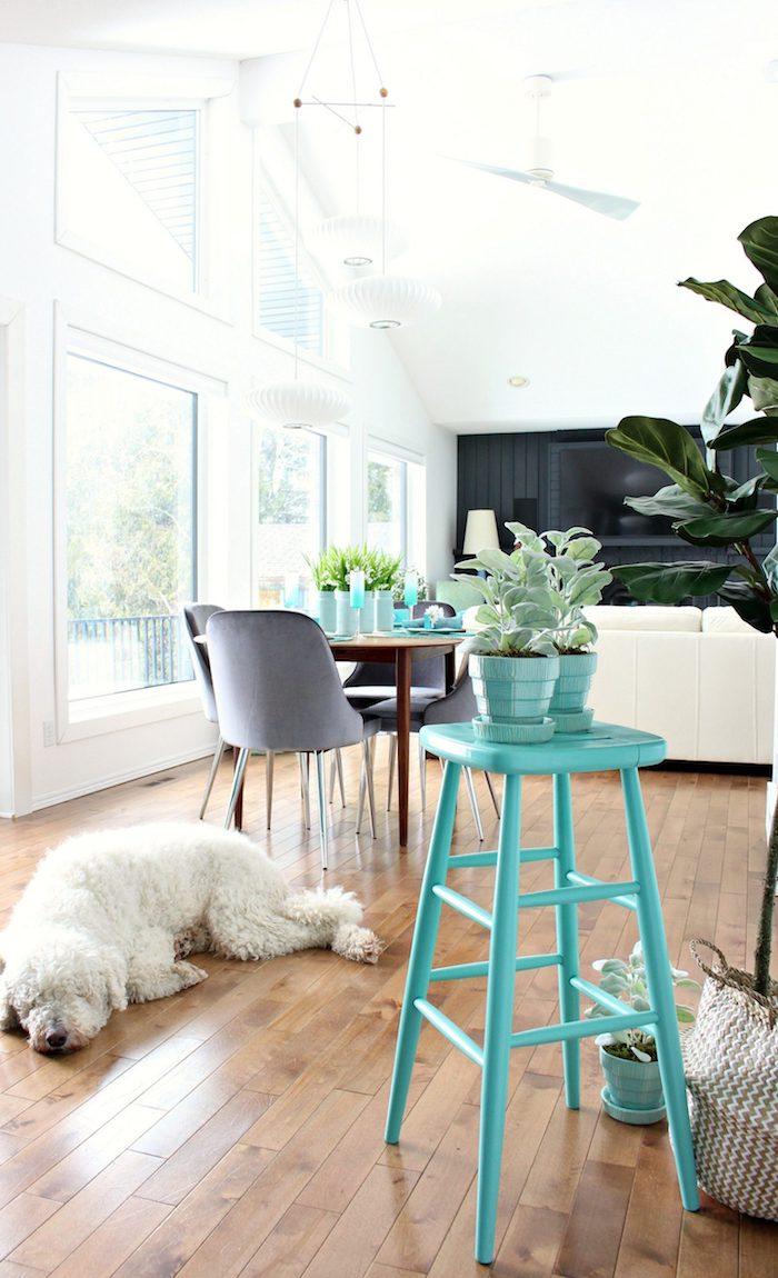 Chien adorable blanche, chaise haute aigue-marine, relooker meuble ancien en moderne, customiser meuble peinture coloré, cuisine et salon en un
