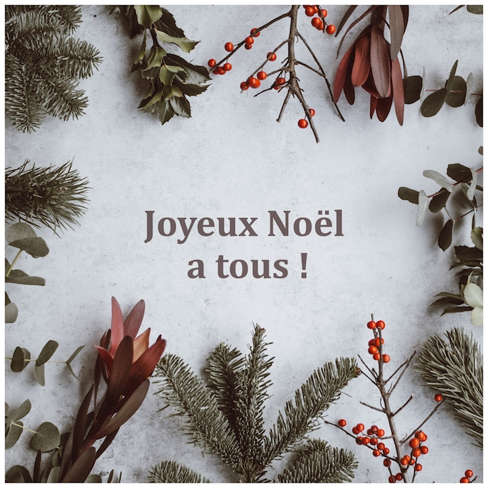 Joyeux Noël à tous, carte de voeux simple avec la neige et des branches d'arbre de noël, photo joyeux noel 2019