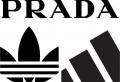 Adidas X Prada : les deux marques confirment la rumeur d'une collaboration
