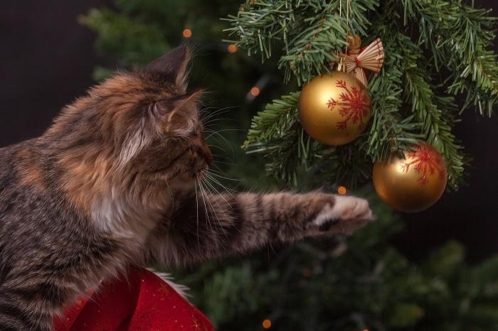 image joyeuses fêtes, fond d'écran Noël avec un chat et un faux sapin de Noël décoré avec ornements en or et rouge