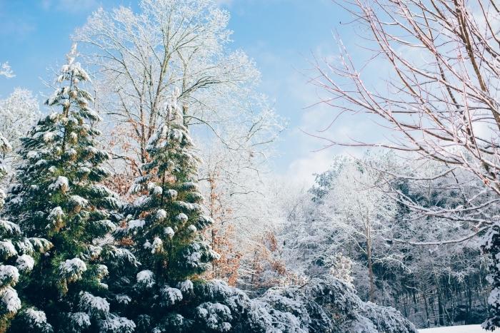 wallpaper ordinateur pour Noël avec un paysage enneigé, fond d'écran Noël avec une photo de la nature dans montagne enneigé