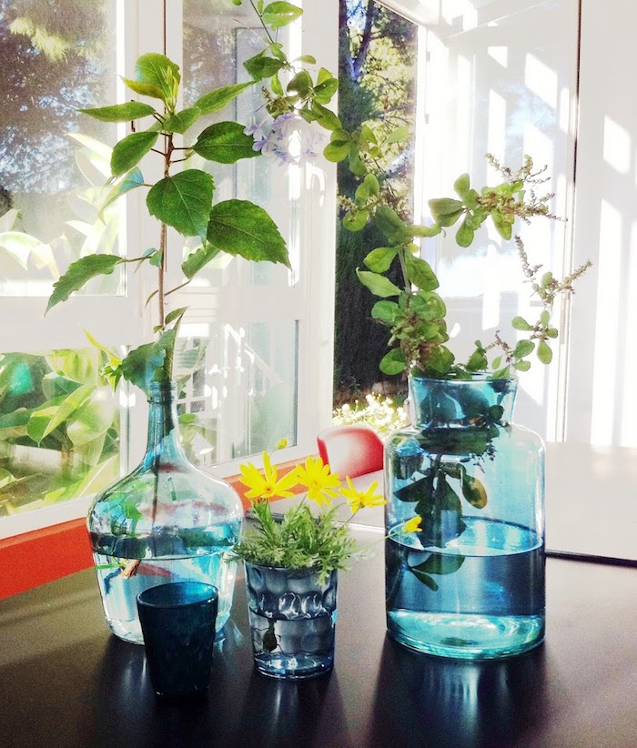 Vases bonbonne dame jeanne, dame jeanne déco parfaite, idée comment faire une composition pour décorer un coin du séjour