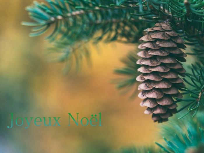 Cone de pin carte joyeux noel image, fond d écran image sapin de noel, image pour saluer ses amis pour la fete