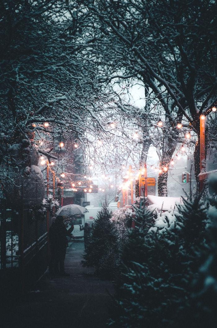 Photo noel parc en hiver, joyeux noel voeux sur belle image guirlandes lumineuses, rue enneigé