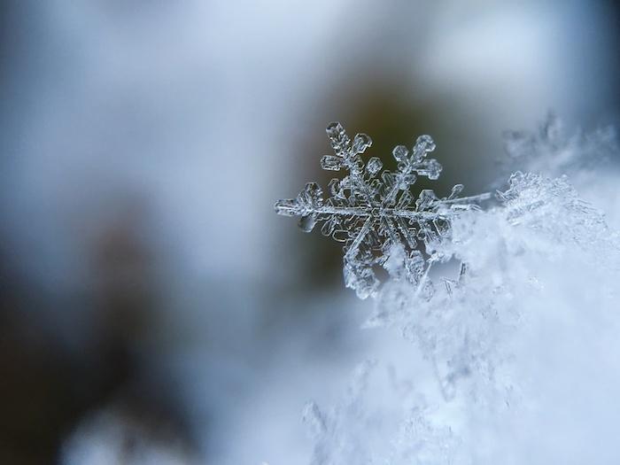 Flacon de neige, belle image de noel blanche, photo sapin de noel magique enneigé