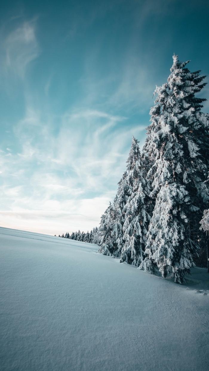 paysage enneigé pour wallpaper smartphone pour noël, photographie de la nature en hiver avec gros sapins enneigés