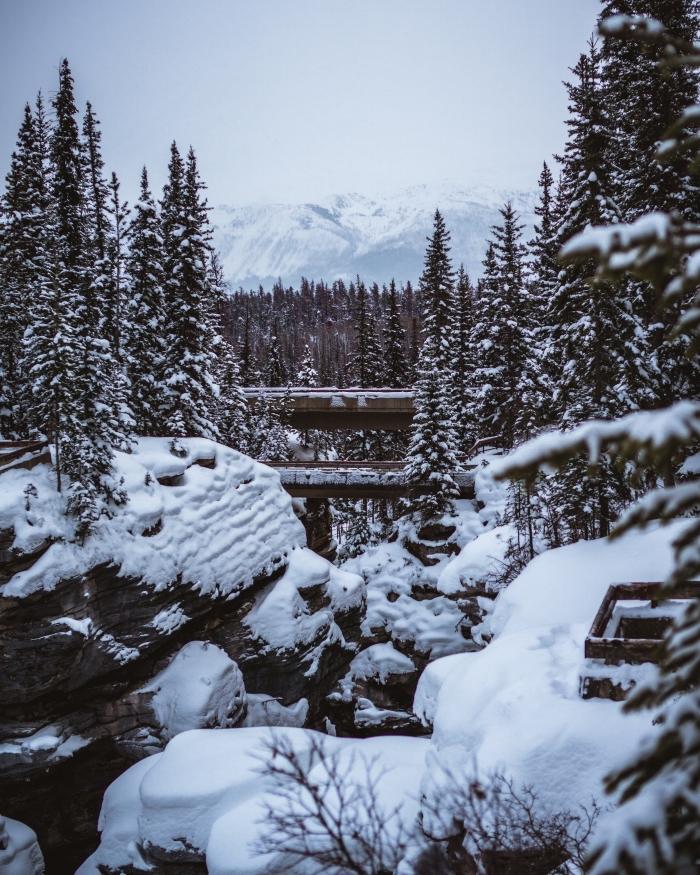 wallpaper iphone avec un paysage hiver, photo avec sapins et montagnes enneigées pour fond d'écran portable