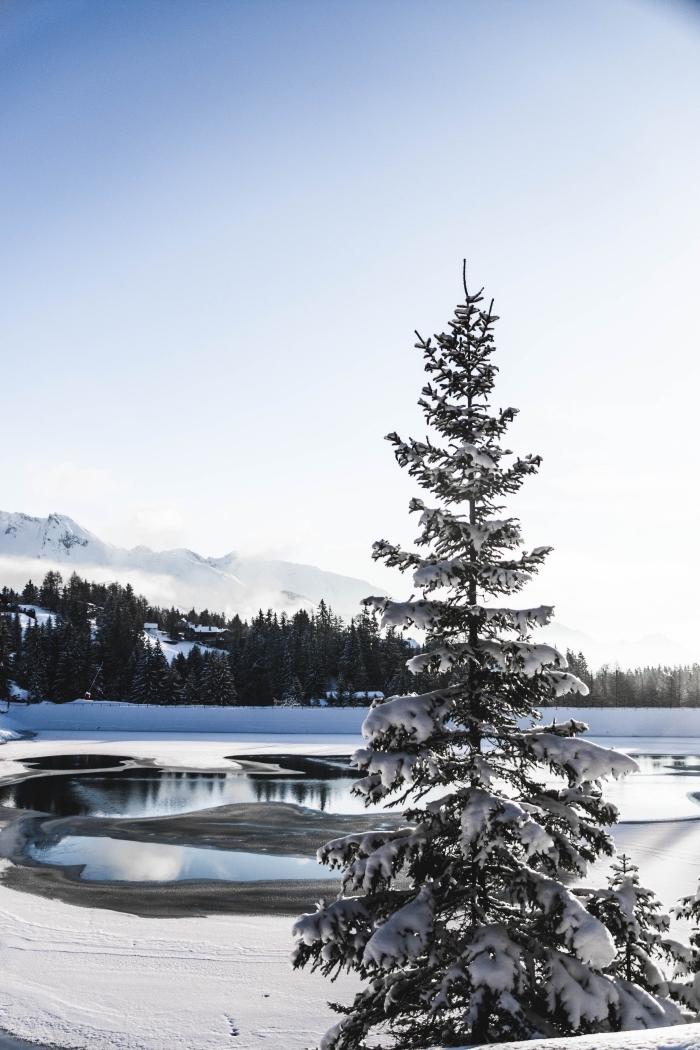 comment prendre de belles photos de la nature en hiver, exemple lumière soleil pour prendre magnifique photo