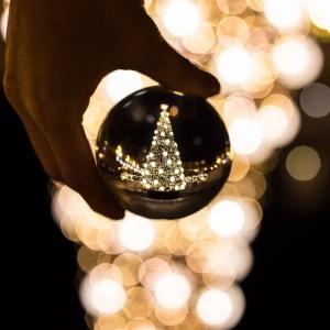 95 idées pour trouver la meilleure image de sapin de Noël et booster son humeur festive