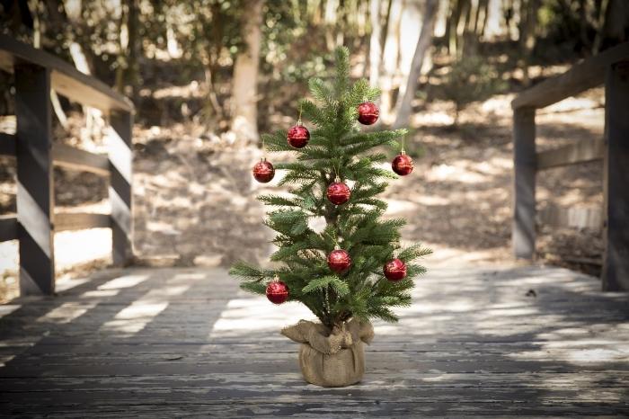 image joyeux noel avec un paysage naturel dans un forêt et un mini arbre de Noël décoré avec ornements rouges