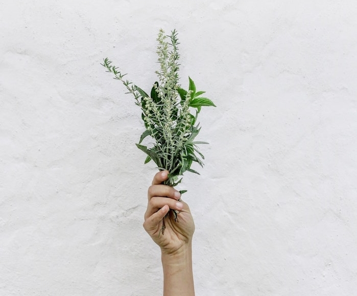 un bouquet d herbes, cultiver des aromatiques d interieur pour avoir des herbes sous la main