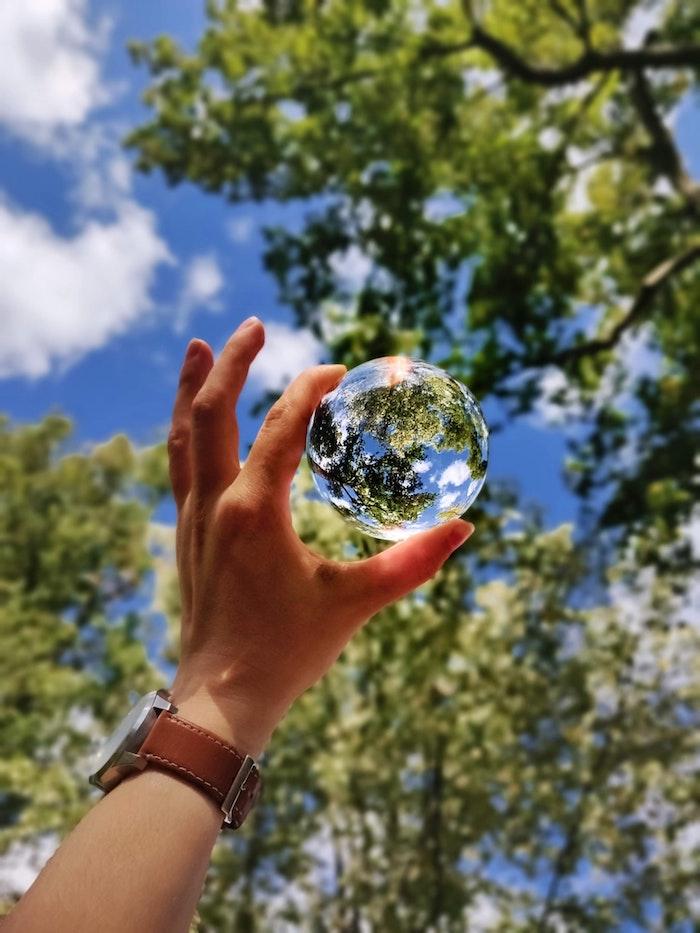 Comprendre les achats qu'on fait et les menaces pour le climat, application évalue les dégâts, main qui tient miniature globe vue arbre et ciel