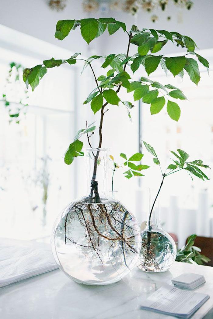 Petite vase pour branches vertes, vase dame jeanne, composition florale à faire soi meme, table blanche