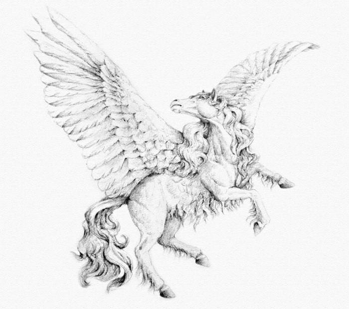 idée de dessin stylé facile, modèle de dessin au crayon blanc et noir d'un cheval féerique à chevelure longue