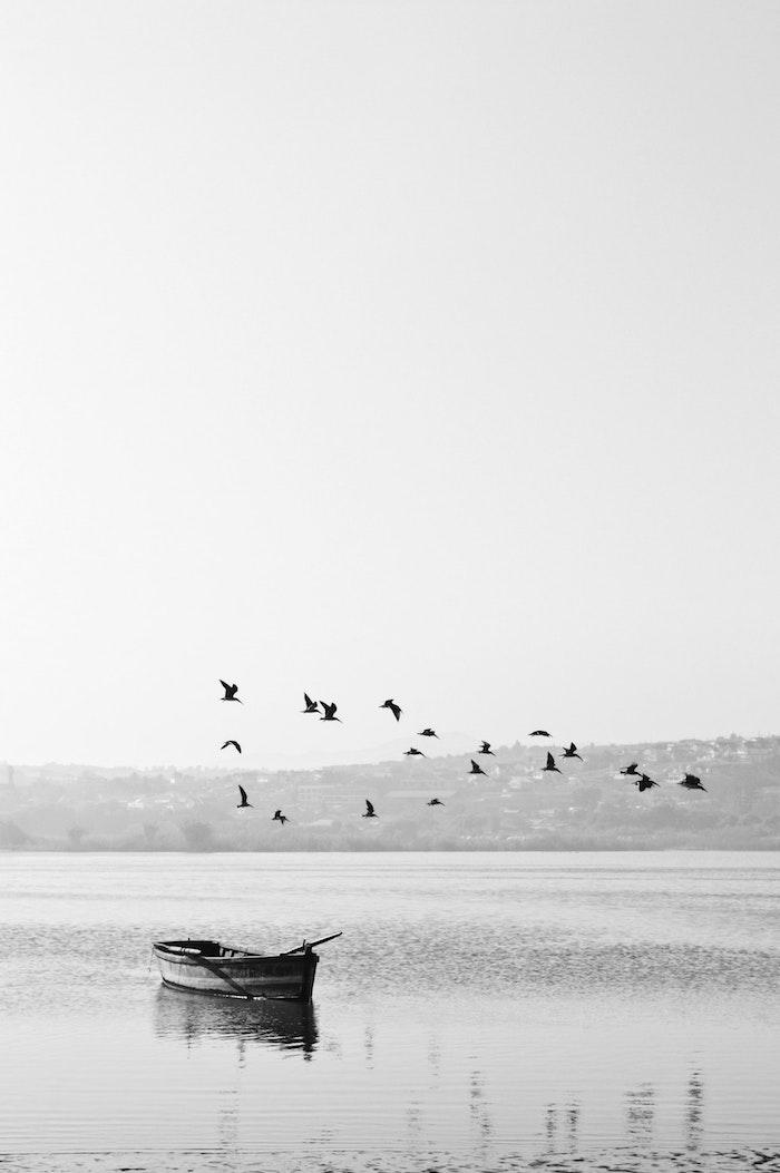 Photo noir et blanc de lac et petit bateau, oiseaux en vol, beau fond d'écran blanc, photo noir et blanc paysage