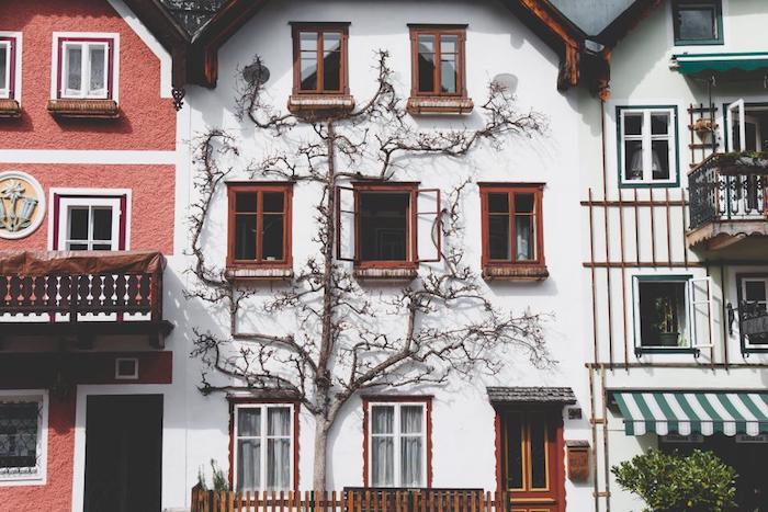 ravalement facade ou comment renover la fácade de sa maison pour meilleure isolation thermique et un look flambant neuf