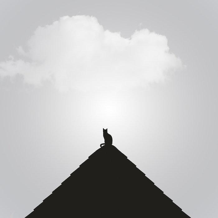 Piramide et chat au sommet dessin graphique, cool idée fond d'écran swag moderne