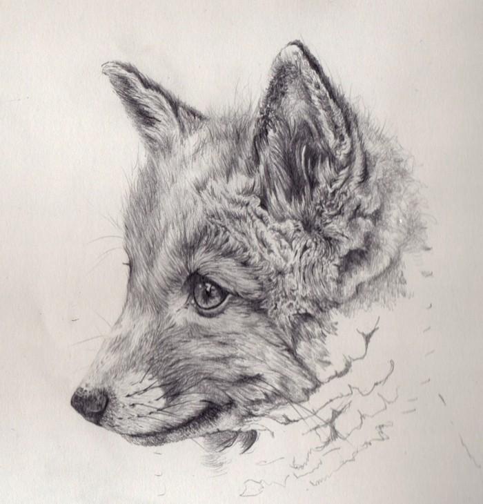 exemple de dessin au crayon facile à l'aide de techniques art au crayon, modèle de dessin animalier sur le thème renard