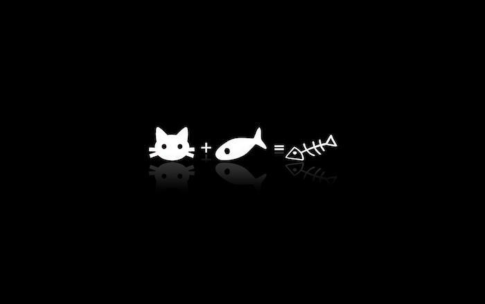 Fond d'écran swag chat et poisson, photo noir et blanc, symbolique des couleurs noir et blanc
