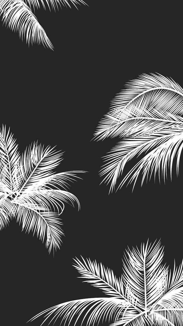 Art peinture monochrome, dessin noir et blanc graphique, fond d'écran iphone avec palmiers blanches sur fond noir